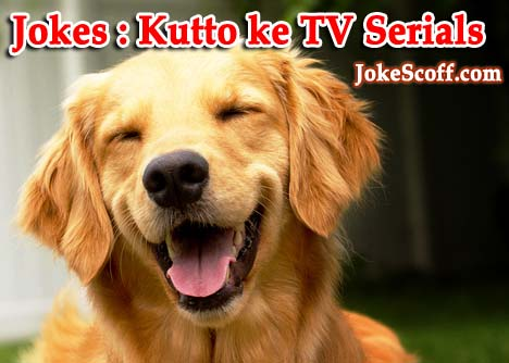 Dogs TV Serials Joke