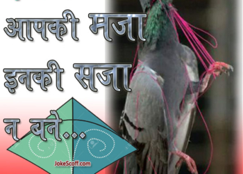 Makar Sankranti, Happy Uttrayan