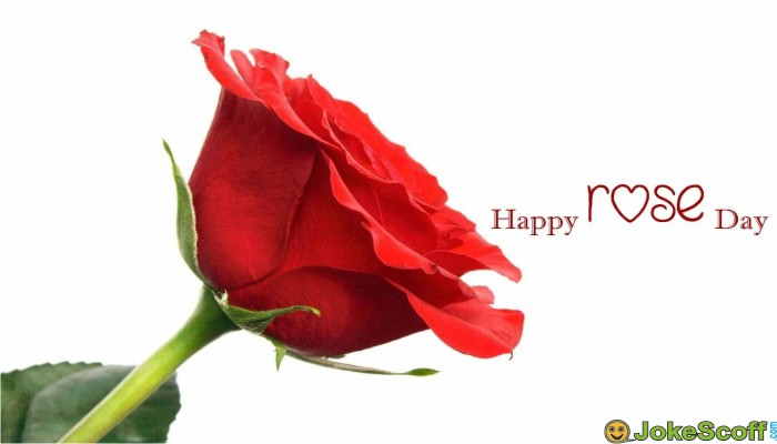 Rose Day SMS