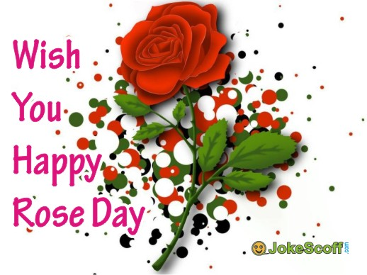 Rose Day Whatsapp DP