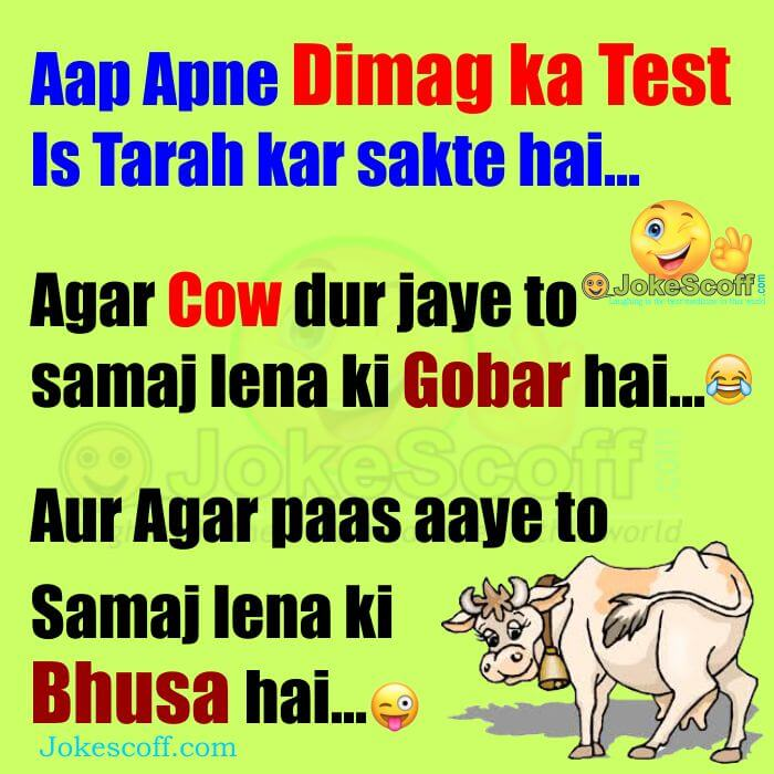dimag ka test funniest jokes mind test jokes hindi