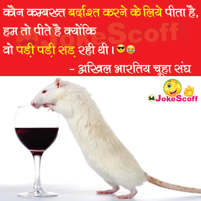 Rats drink alcohol in bihar funny shayari