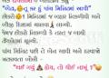 Airport and Flight Service Jokes in Gujarati