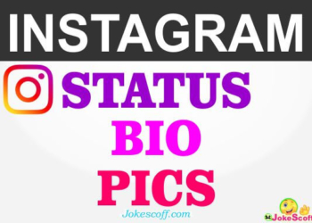 Instagram Bio Status and Pics in Hindi