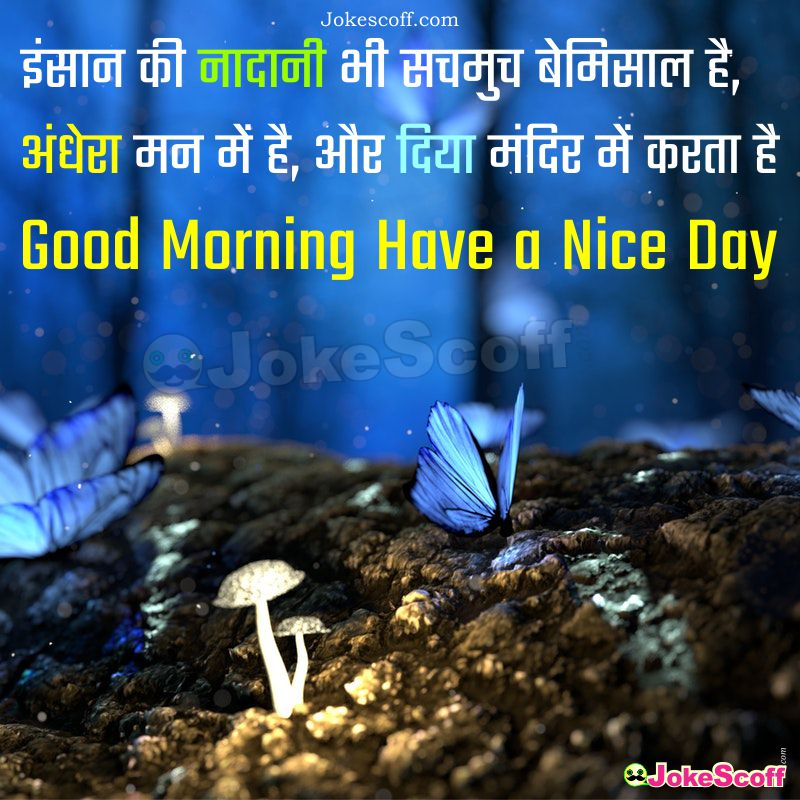 Good Morning Quote Image in Hindi