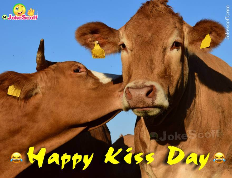 Kiss Day Wishing with Funny Image
